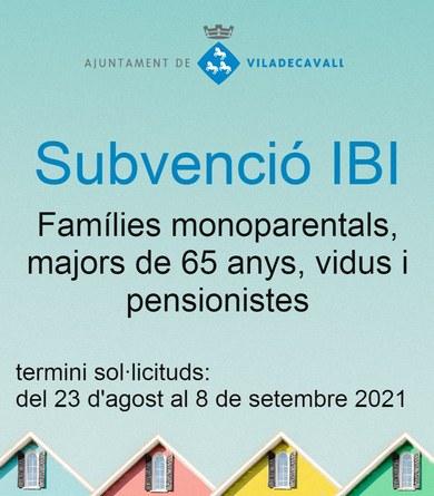 Ajuts a l'IBI per a famílies monoparentals i majors de 65 anys, vidus i pensionistes