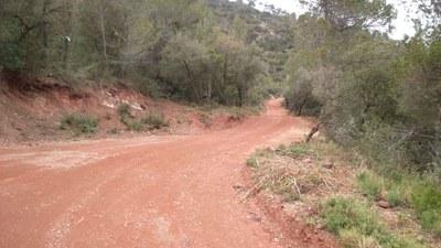 Arranjament camins forestals