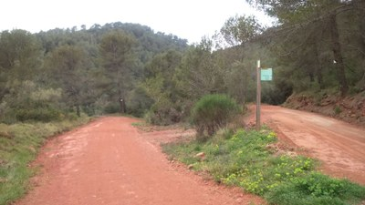 Arranjament de camí forestal