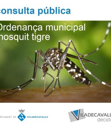 Consulta pública prèvia a l'ordenança per a la prevenció i el control del mosquit tigre