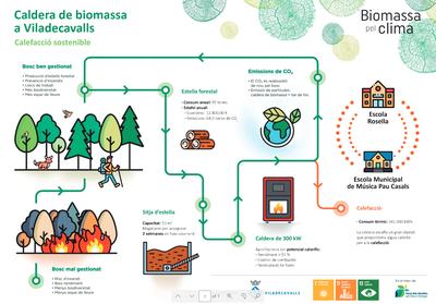 Infografia biomassa