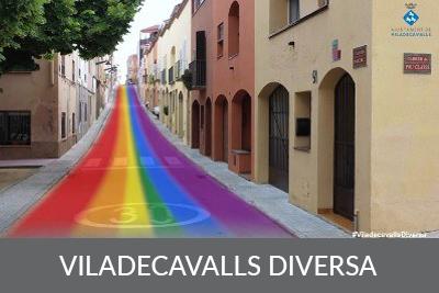 Viladecavalls Diversa